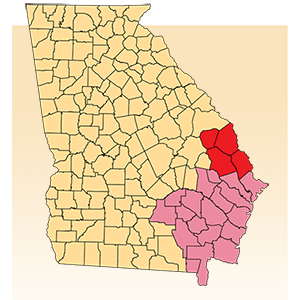 Map Of Georgia Public Health Districts.Ogeechee Judicial Circuit First Judicial District